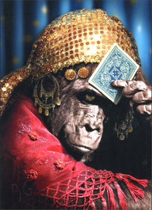 Avanti Press Fortune Telling Gorilla Card