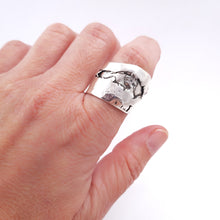 Load image into Gallery viewer, Anillo Libertad, Serie 2