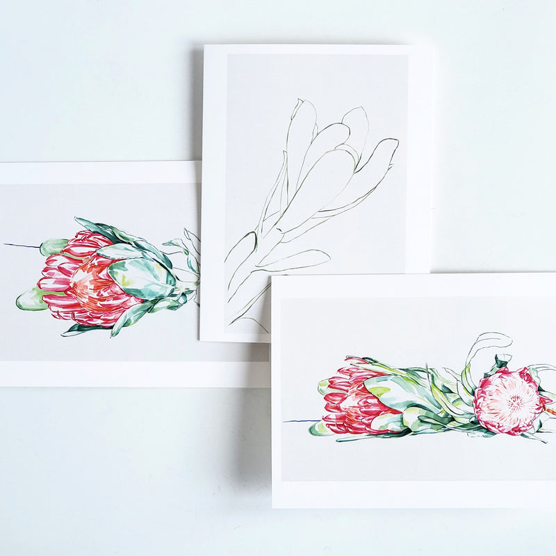 Boxed set of 10 Assorted Note Cards