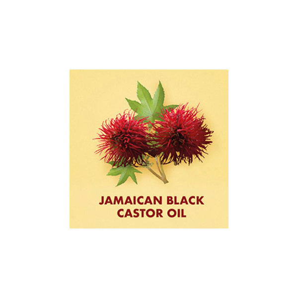 Shea Moisture Jamaican Black Castor Oil Leave-In Conditioner 11oz.