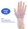 Vinyl Fits-all Disposable Gloves, 100-Count/Box, Transparent