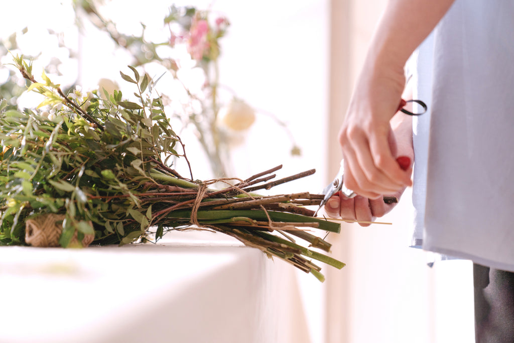 scissors cutting flowers