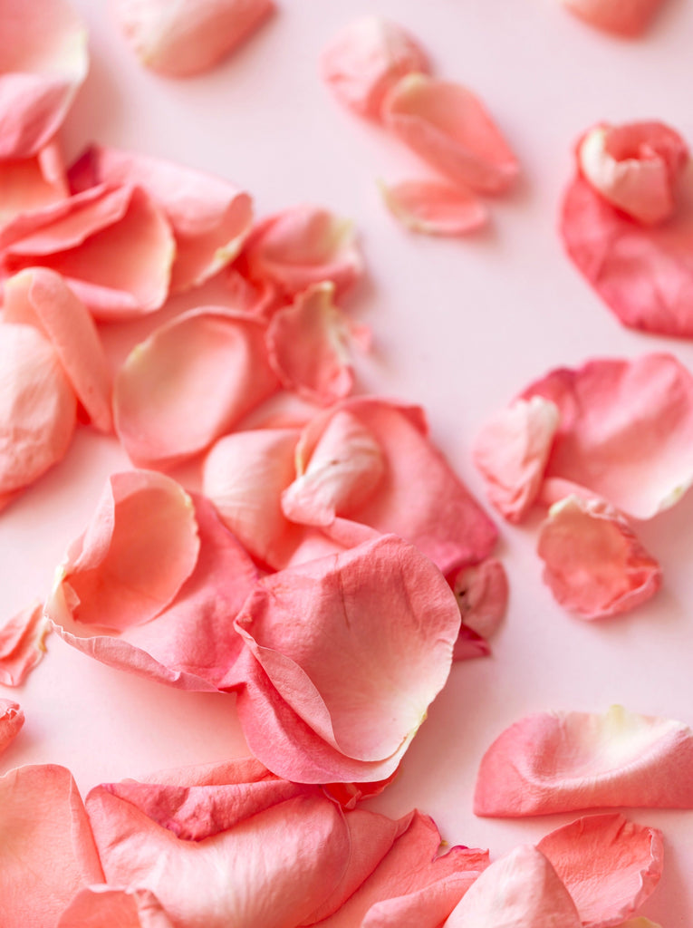 pink rose petals on a table