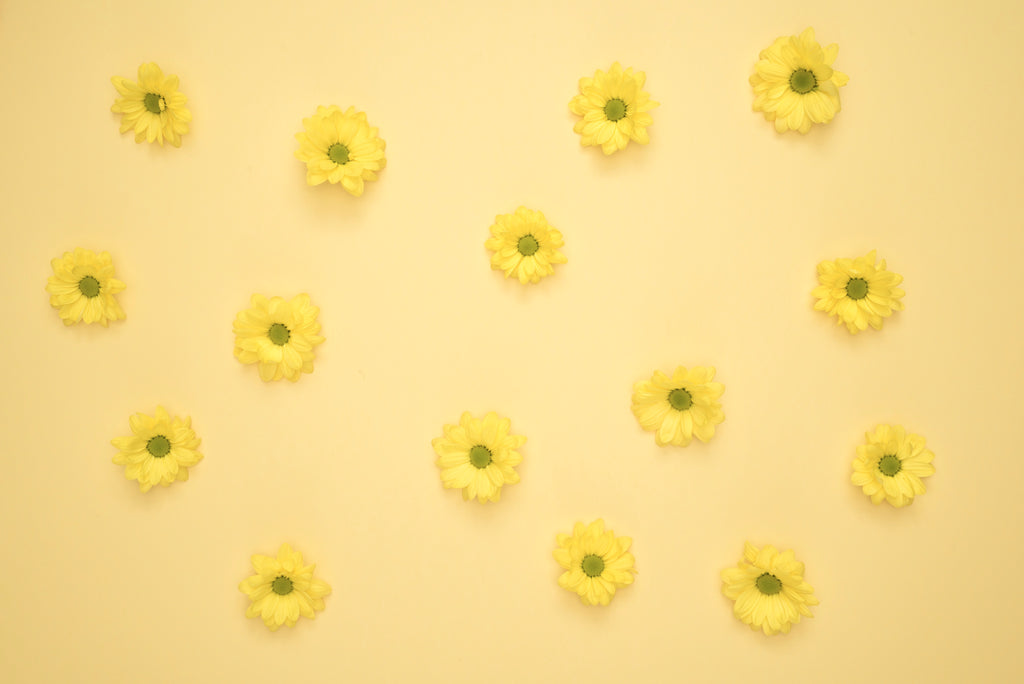 yellow pastel flowers