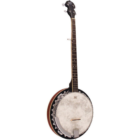 Barnes and Mullins Banjo 'Perfect' 5 String BJ300 - Penwarden Music  - 1