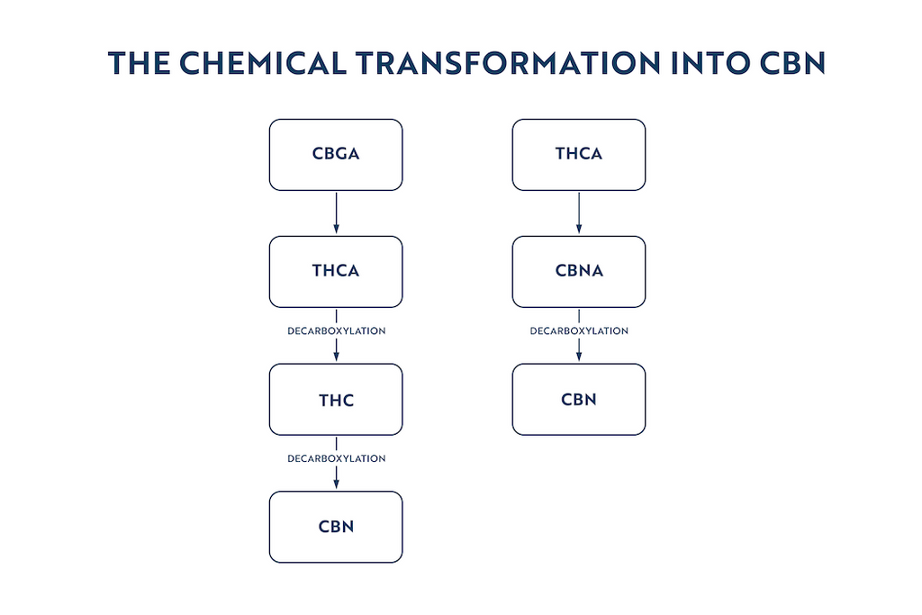 chemical transformation into cbn