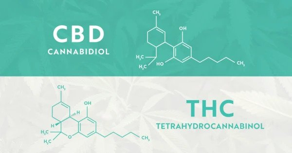 Molecular difference between CBD and THC
