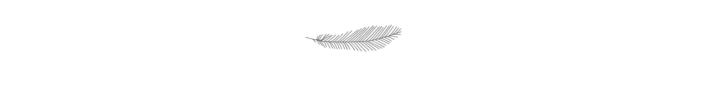 Birdling Feather