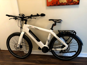 Protecting and storing your ebike with THINstem