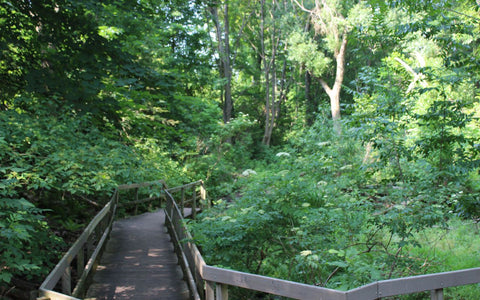 Merrill Bridge Road Park Image