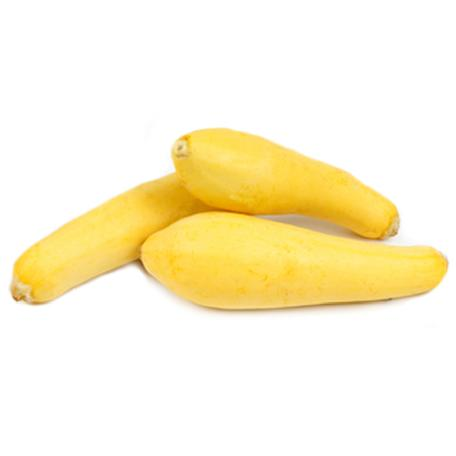 Squash (GOLDEN SUMMER CROOKNECK)