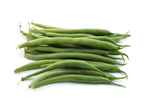 Bush Bean (Blue Lake)