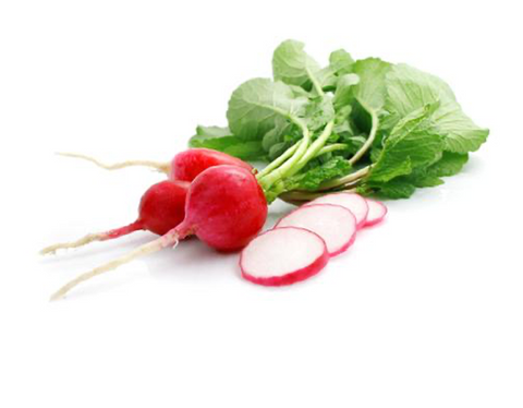 Radish (Early Scarlet Globe)