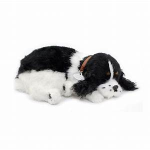 Perfect Petz Cocker Spaniel