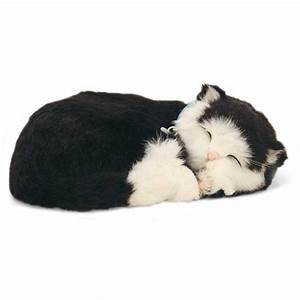 Perfect Petz Cat Black and White Short Hair