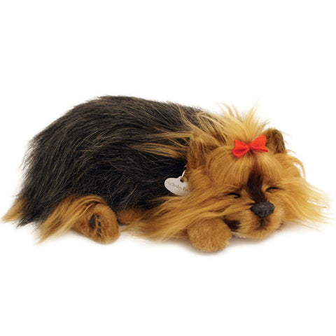 Perfect Petz Yorkie