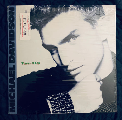 "Michael Davidson - TURN IT UP 12"" remix LP Vinyl - Used like new"