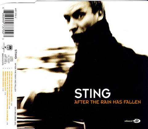 Sting ‎– After The Rain Has Fallen - Used CD Single