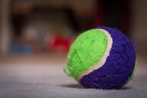 tennis ball used as a dryer ball