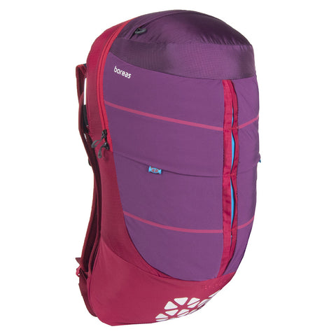 Peralta Tech Daypack (Mojave Red)