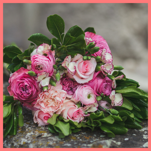 Order The Hillery Flower Bouquet from our Spring Collection! The Hillery bouquet includes mixed stems of light pink roses, light pink ranunculus, brilliantina, light pink carnations, and solomio. The flowers will be shipped directly from the farm to you!
