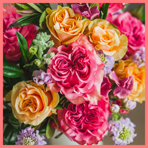 Order The Roz Flower Bouquet from Spring Collection. The Roz flower bouquet includes mixed stems of peach garden roses, hot pink garden roses, lavender scabiosa, lavender stock, hebes, and solomio. The flowers will be shipped directly from the farm to you!