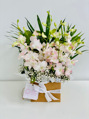 Fairy light pink orchid box