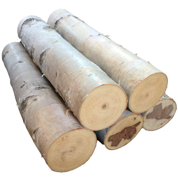 Large Birch Fireplace Log Set of Five - Northern Boughs