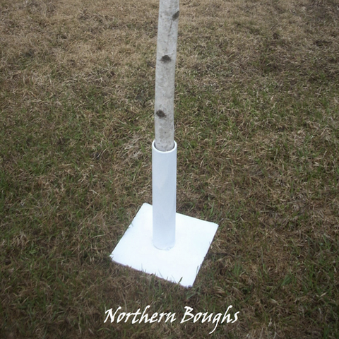 One White Birch Wedding Chuppah Stand - Northern Boughs  - 1