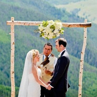 3 Piece White Birch Wedding Arch Kit - Northern Boughs