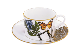 Spinocchia Freund X Mary Katrantzou Limited Edition 6 Piece Cup 7 Saucer Set
