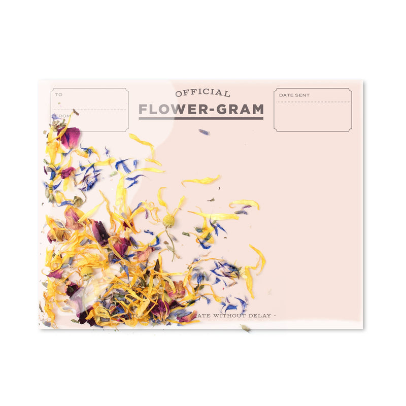 Flowergram - Wildflowers + Mint