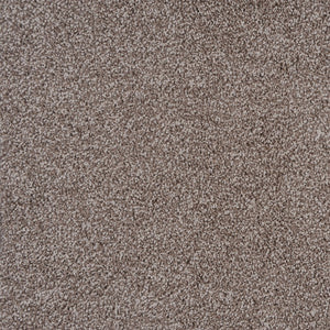 Momentum - Polypropylene - Flooring Direct Greenlane