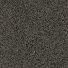 Load image into Gallery viewer, Pearl Bay - 100% Solution Dyed Nylon - Flooring Direct Greenlane