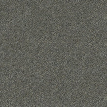 Load image into Gallery viewer, Westminster - 100% Solution Dyed Nylon - Flooring Direct Greenlane