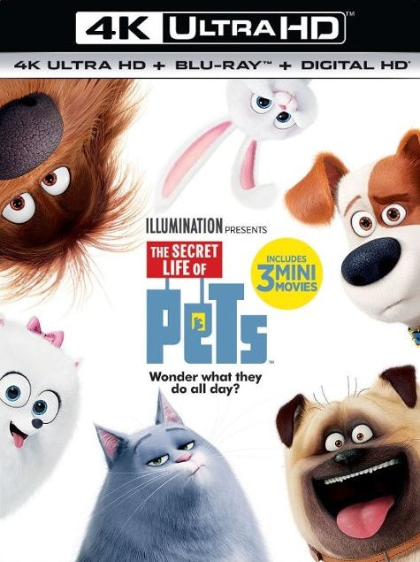 The Secret Life of Pets 4k
