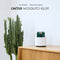 Cactus USB Mosquito Killer Lamp UV Light