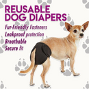 Reusable Dog Diaper