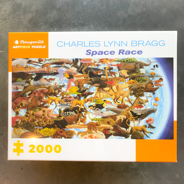 Space Race 2000 pc Puzzle