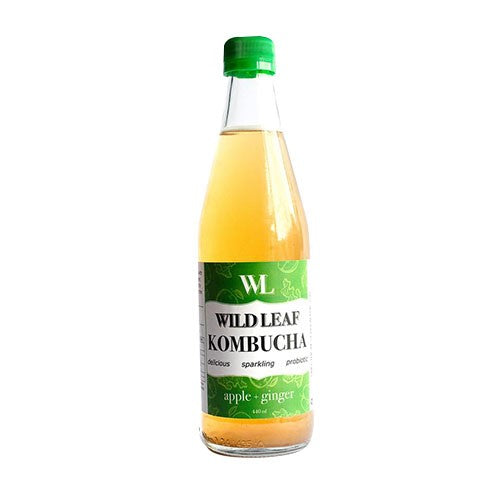 Wild Leaf Kombucha Apple + Ginger 250ml