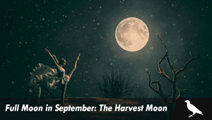 Full Moon in September: The Harvest Moon