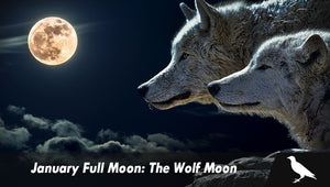 January Full Moon: The Wolf Moon