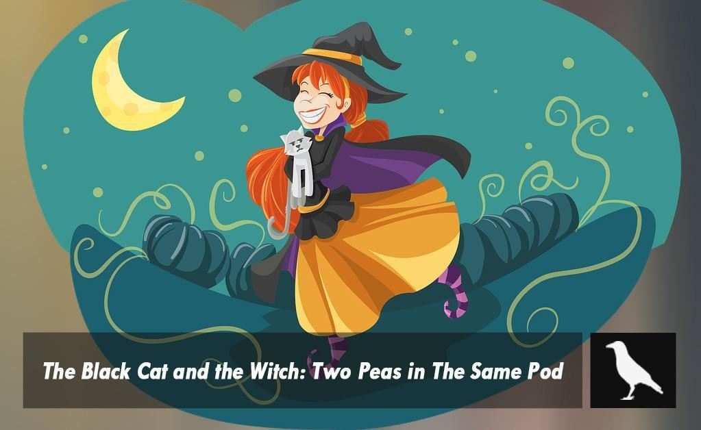 The Black Cat and the Witch: Two Peas in The Same Pod