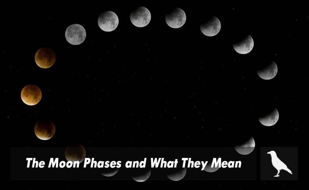 The Moon Phases And What They Mean The Moonlight Shop