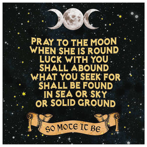 Pray To The Moon Canvas Wall Art - The Moonlight Shop