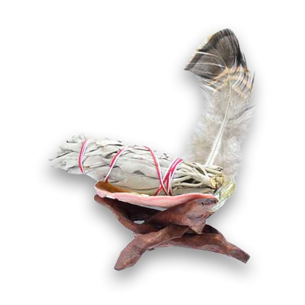 Smudging Kit: White Sage and Abalone Shell on Cobra Stand