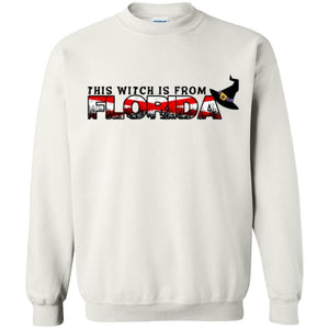 This Witch Is From Florida Shirt - The Moonlight Shop