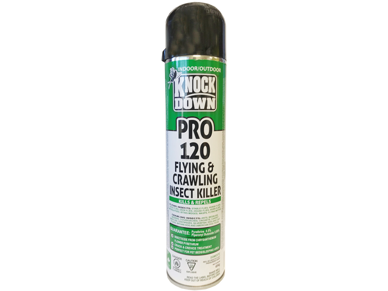 KnockDown KD120P - Flying and Crawling Insect Spray