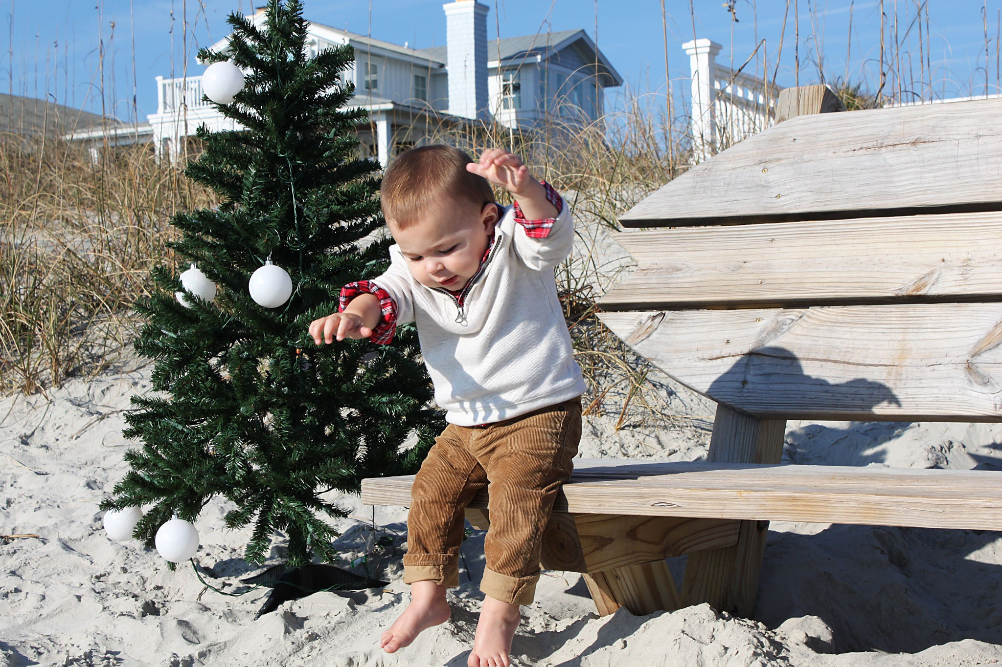 Coastal Holiday Family Photos