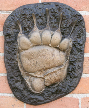 Grizzly Bear Paw Track Wall Art